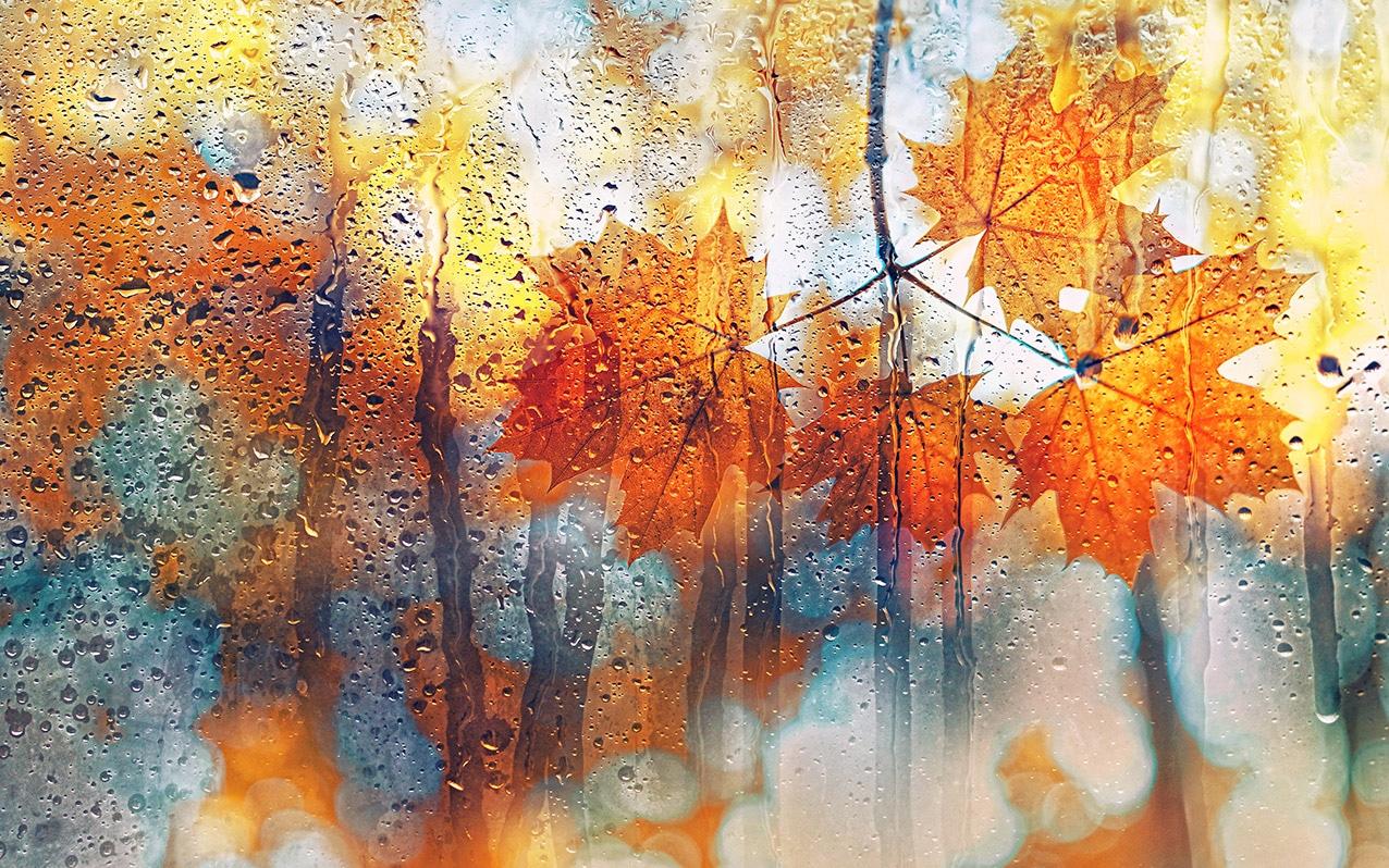 fall weather windows